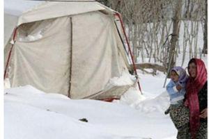 وضعیت اسکان زلزلهزدگان بعد از گذشت70روز