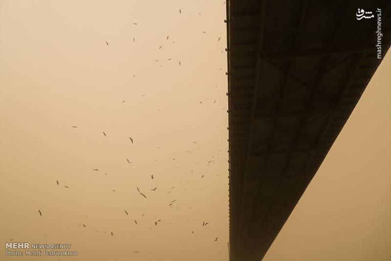 گرد و خاک در هوای اهواز