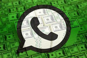 همه چیز درباره WhatsApp Business