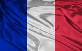 پرچم فرانسه نمایه