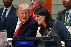 نیکی هیلی و ترامپ