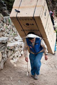 عکس/ کولبری در هیمالیا!
