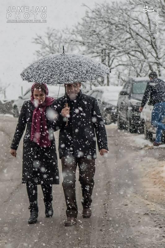 عبور و مرور مردم با چتر در هوای برفی ماسوله