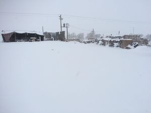 عکس/ بارش بیسابقه برف در دل کویر