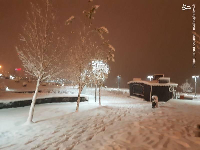 زمین های اطراف دریاچه شهدای خلیج فارس (چیتگر) پوشیده از برف