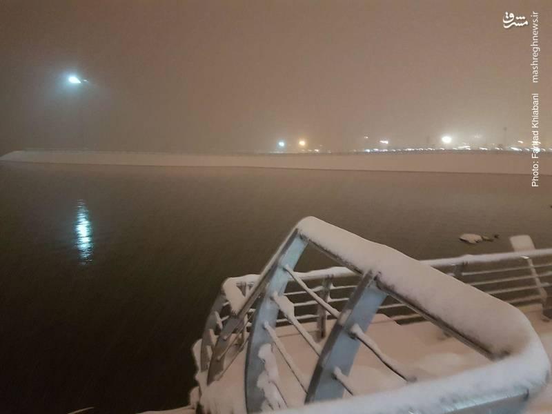 چشم اندازی از دریاچه چیتگر و بارش سنگین برف