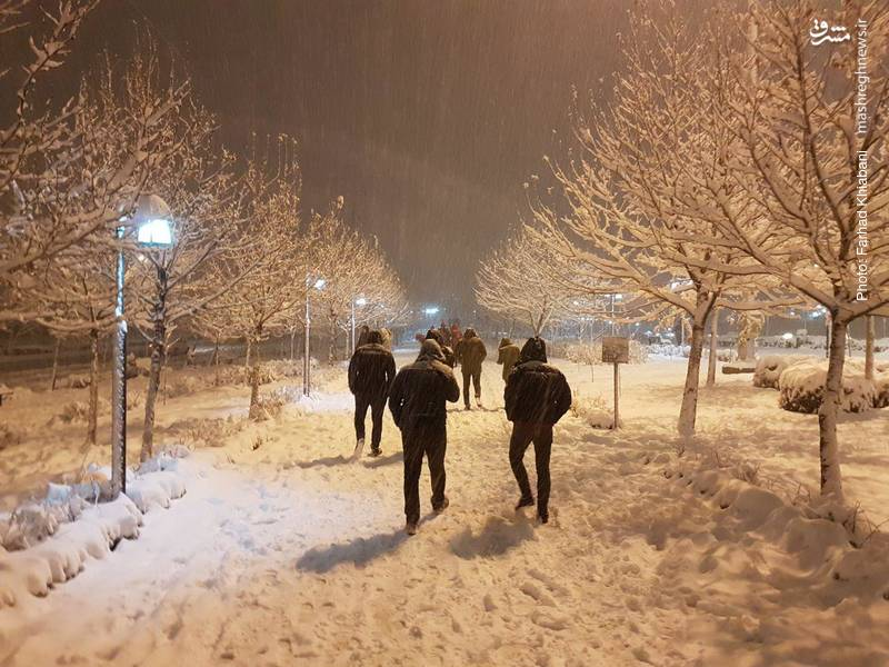 لذت قدم زدن در یکی از معدود شب های برفی تهران