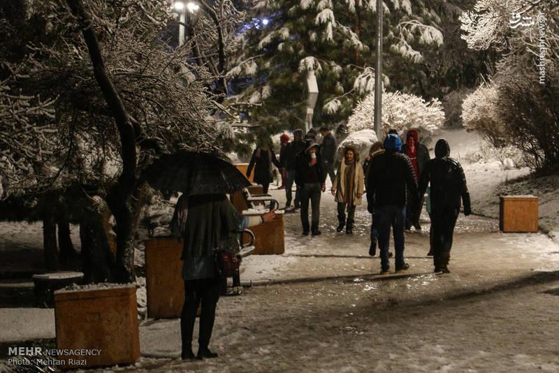 بارش برف در تهران