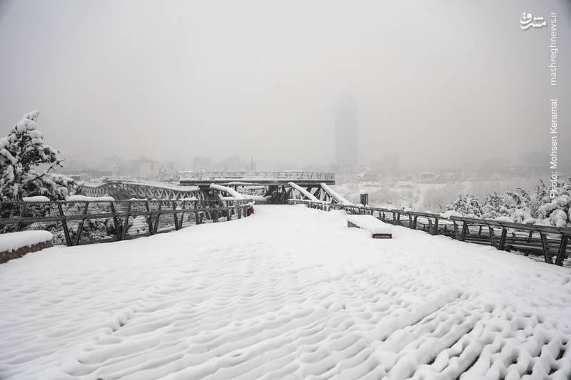 پل طبیعت پوشیده از برف