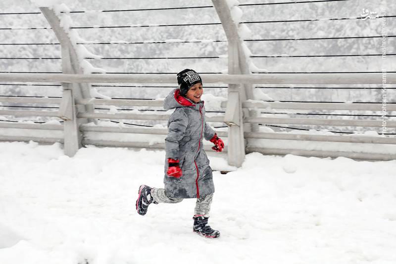 شادی کودکان تهرانی از بارش برف