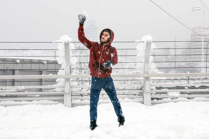 برف بازی جوانان تهرانی