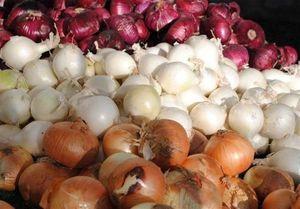 واکنش وزارت کشاورزی به پیاز ۹ هزار تومانی