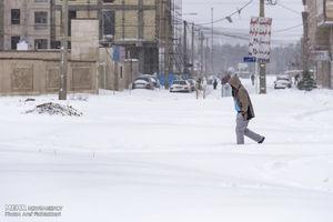 فیلم/ شهرداری ورداورد در خواب زمستانی!