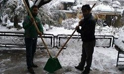 برفروبهای آنلاین به جای برف روبهای قدیمی