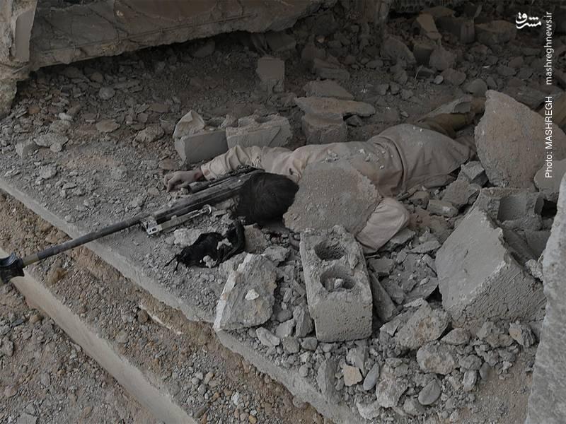 تلفات تروریست ها در محور المیادین - البوکمال