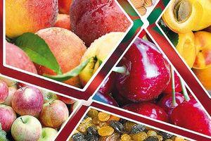 میوههایی برای تقویت چربی سوزی