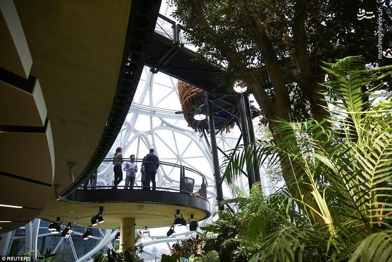 این گنبدها شامل یک مرکز برای بازدیدکنندگان به نام Understory نیز است