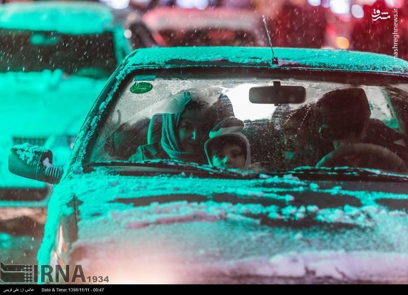 خانواده اراکی زیر بارش برف