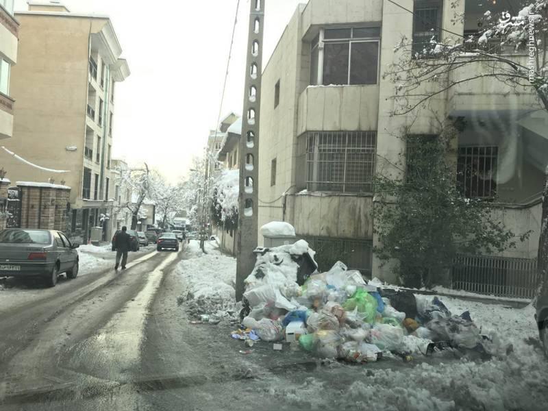 انباشت زباله ها در خیابان شفیعی تجریش