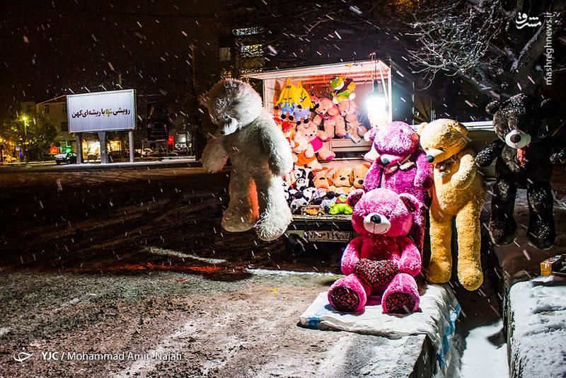 کسب روزی حلال در بارش برف