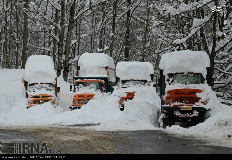 خودروهایی که زیر برف پنهان شده اند.