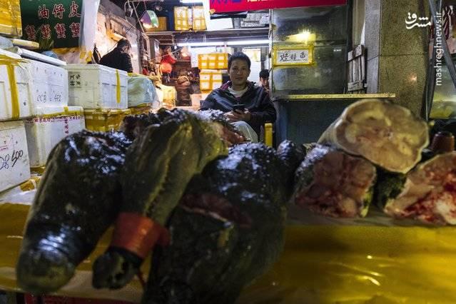 بازار غذاهای دریایی در  گوانگژو چین