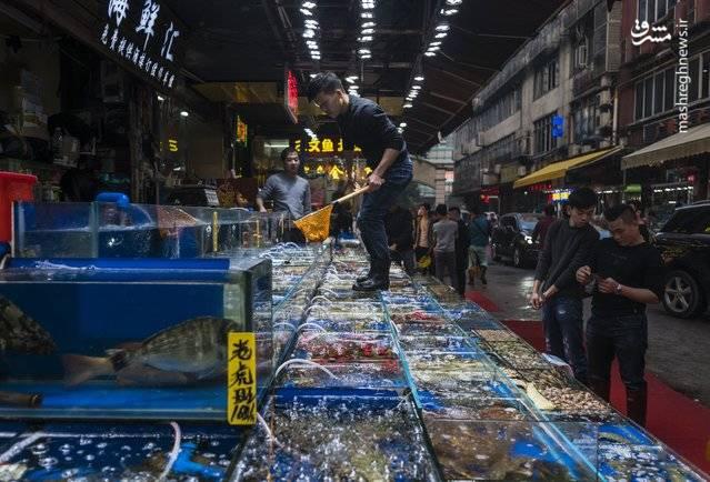 یک مرد در حال توزیع انواع محصولات غذایی در سبدهای مربوط است