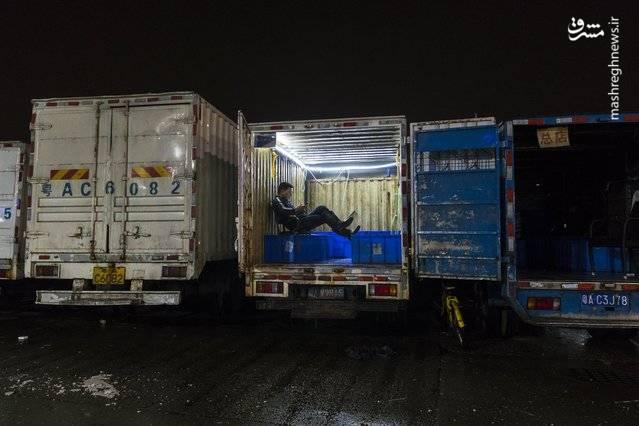 مردی که در کامیون نشسته و منتظر بارگیری غذاهای دریایی است