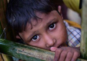 شواهد جدید از کشتار و دفن جمعی مسلمانان روهینگیا