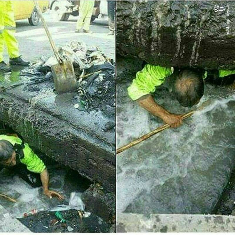 تصاویری تامل برانگیز از تلاش پاکبان شهرداری برای کسب روزی حلال