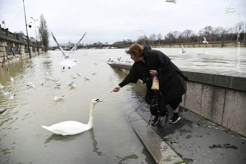 پایان بارشهای مستمر در پاریس که به طغیان رودخانه سن و آبگرفتگی شهر پاریس انجامید.
