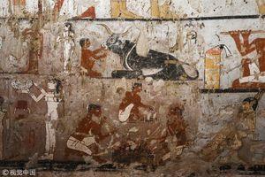 عکس/ کشف آرامگاه ۴۴۰۰ ساله در مصر