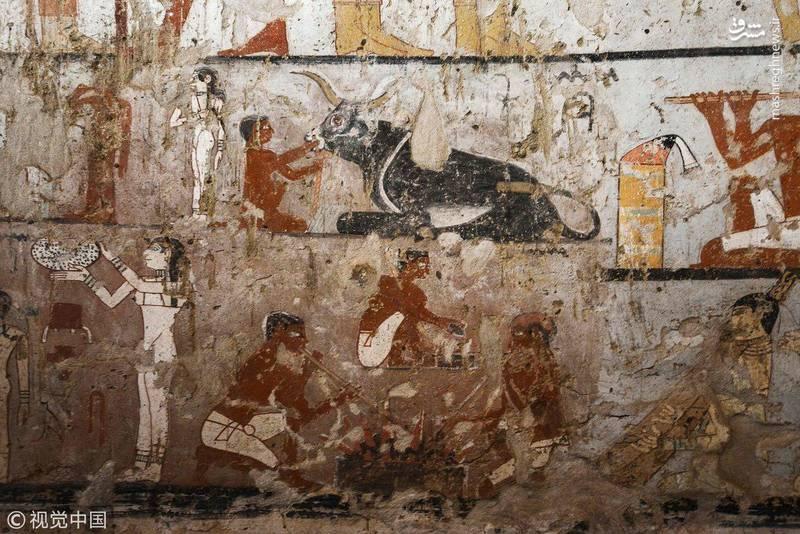نقاشی های روی دیوار بخشی از علایق هت پت را نشان می دهد.