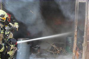 عکس/ آتش سوزی لانه کبوتر در مشیریه تهران