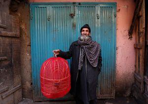 عکس/ بازار پرندگان کابل