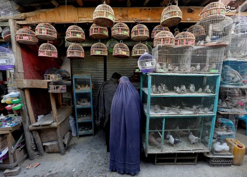 بازار کاهفروشی کابل بیشتر مردان هستند اما گاه زنان برقه پوش هم در میانشان دیده میشود
