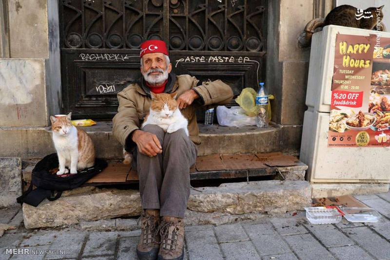 اغلب جمعیت استانبول را ترکان استانبولی و بیشتر مذهب جمعیت اسلام است