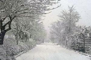 فیلم/ بارش برف در اردبیل