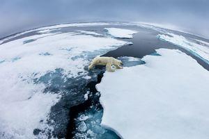 عبور از یخ های شناور