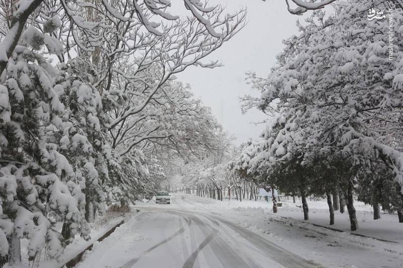 طبیعت زیبا و دیدنی اردبیل در زمستان