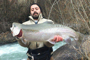 عکس/ شکار ماهی 7 کیلویی در ریجاب