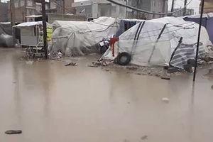 فیلم/ بارش شدید باران روی چادر زلزله زدگان کرمانشاه