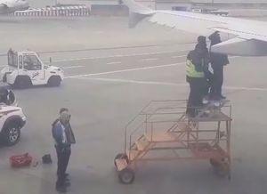 فیلم/ تعمیر بال هواپیما جلوی چشم مسافران