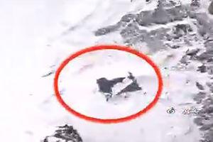 فیلم واضح از لاشه هواپیمای تهران - یاسوج