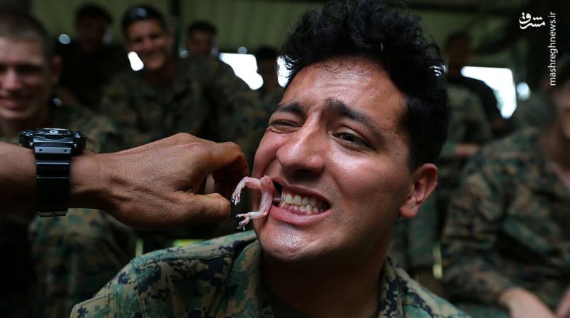 خورن مارمولک توسط نظامیان آمریکایی