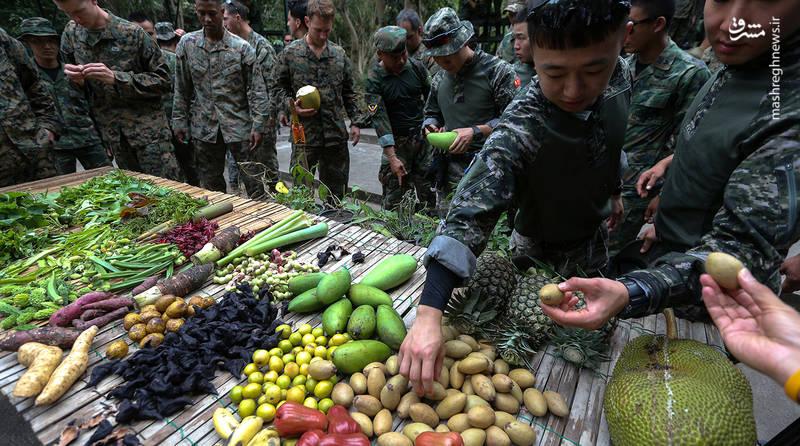 تفنگداران دریایی آمریکا و کره جنوبی با سبزیجات و میوه های محلی آشنا میشوند