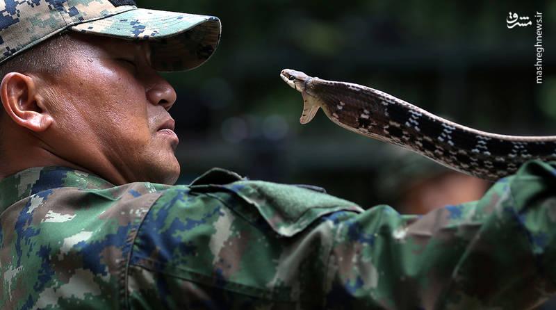 مربی نظامی ارتش تایلند در طول تمرینات کبرا طلا