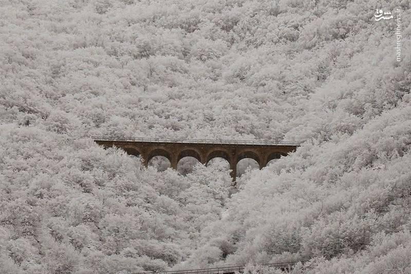 عکس/ نمایی زیبا از پل ورسک در زمستان