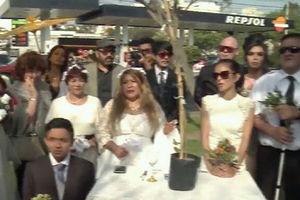 """فیلم/ زنانی که با """"درخت"""" ازدواج میکنند!"""