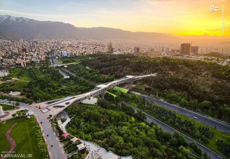 تصویر هوایی زیبا از پل طبیعت